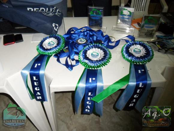 ENABETTAS 2011 - Troféus e rosetas do 1º, 2º e 3º colocado
