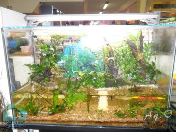 ENABETTAS 2011 - Paludário na loja Smart Fish (Obra de Carlos Orcades)
