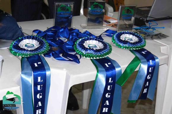 Troféus, medalhas e rosetas