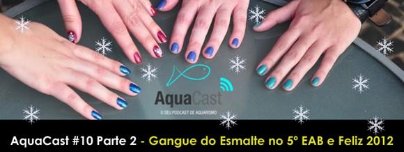 Aqualinea AquaCast 10 Parte 2