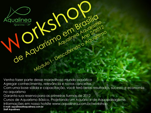 Workshop Aqualinea Brasília