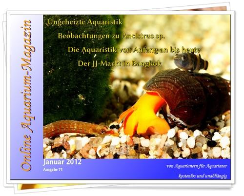 Online Aquarium-Magazin de Janeiro/2012