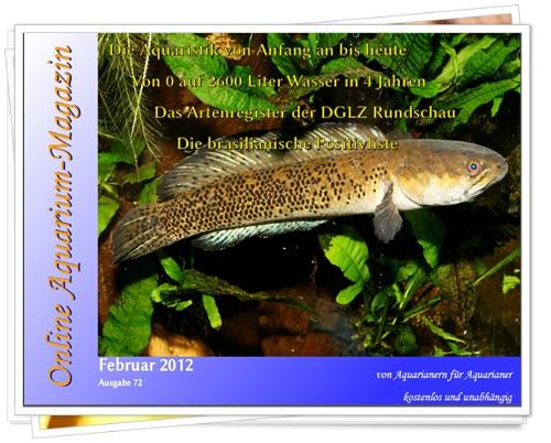 Online Aquarium-Magazin de Fevereiro/2012