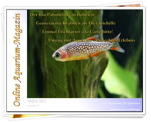Online Aquarium-Magazin de Março/2012