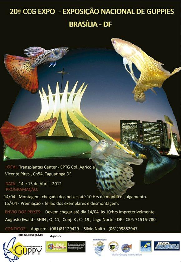 20º CCG EXPO